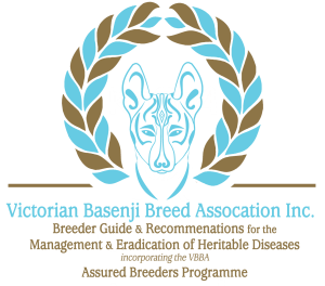 Basenji Puppy Breeders Australia